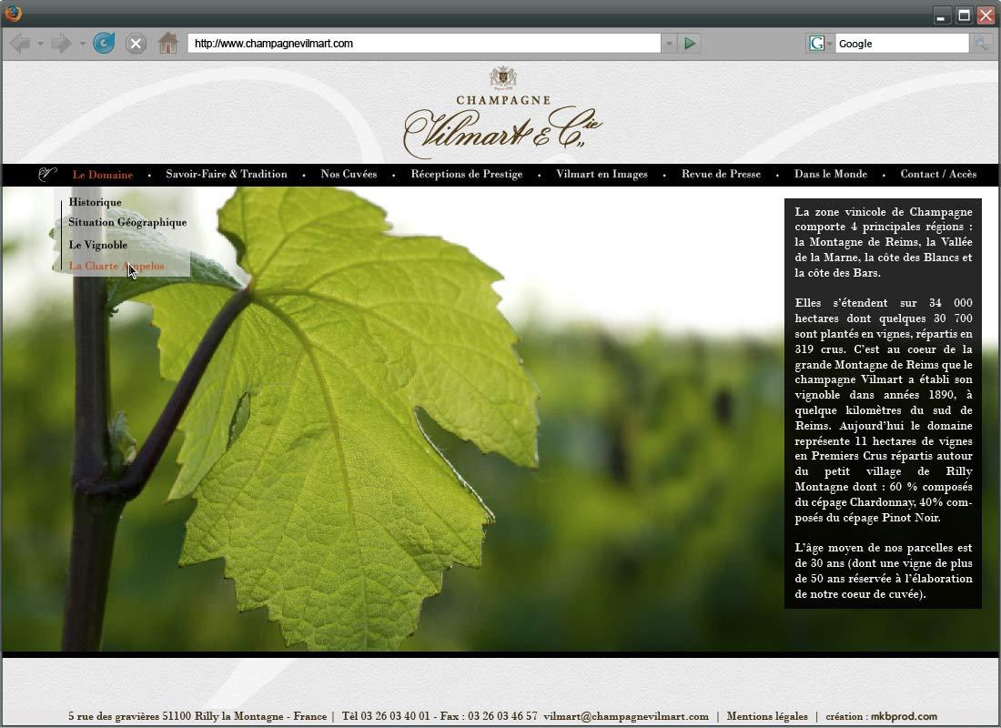 maquette-site_champagnevilmart-20121221_2-3-Le-domaine-Le-Vignoble-copie-2